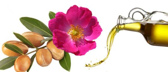 rosa mosqueta para eliminar estrias